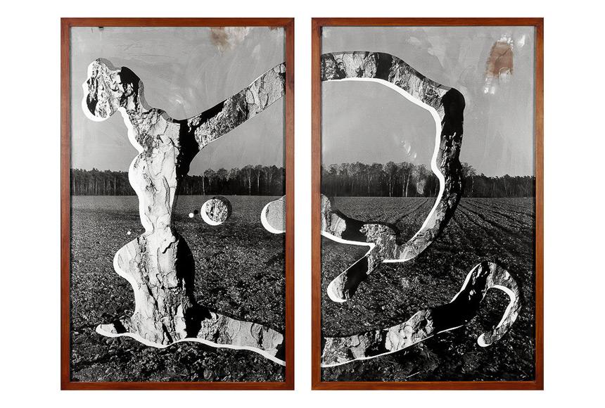 031_CDlugos-1991-ImaginaereSkulptur-Ribbeck-220x264cm