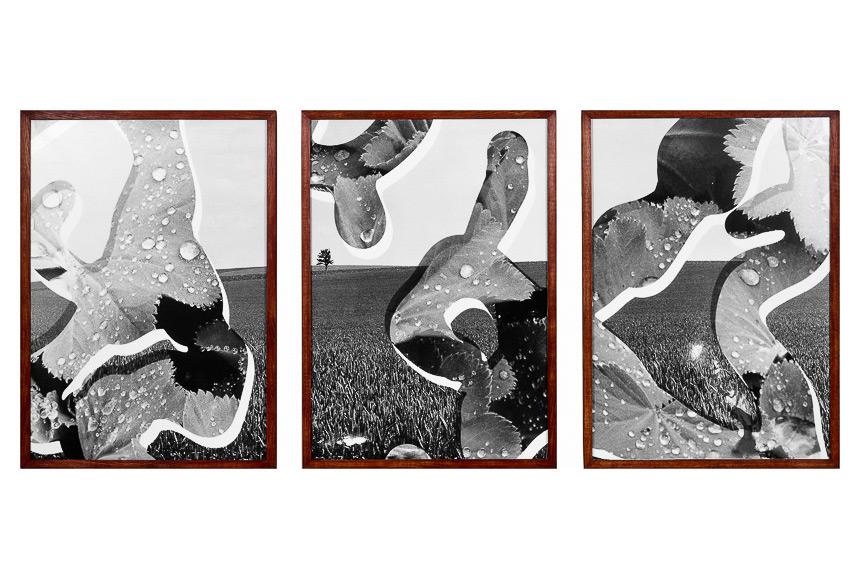 034_CDlugos-1992-ImaginaereSkulptur-Aub-260x127cm