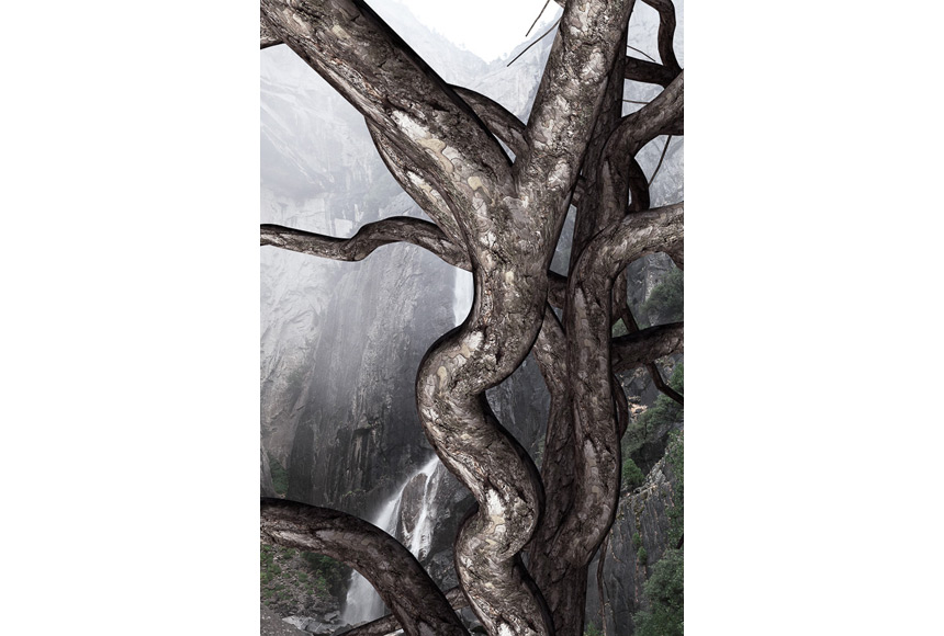 059_CDlugos-2011-Roots001-60x45cm