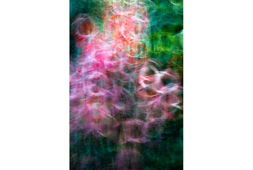 072_CDlugos-2013-Metamorphosen009-84x60cm