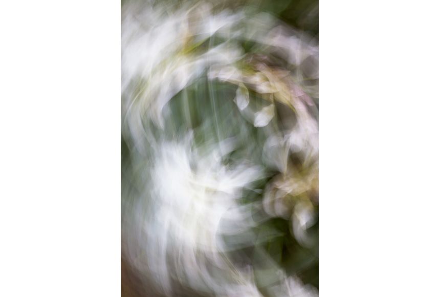 078_CDlugos-2013-Metamorphosen015-78x52cm